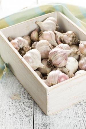 Garlic Stock Photo - 16723491