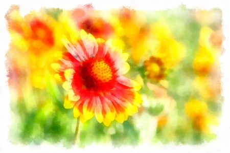 Flowers watercolor Stock Photo - 17511413