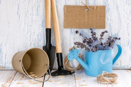 Gardening tools photo