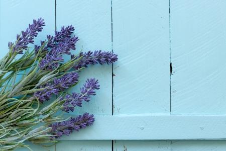 Flowers on vintage wood background photo
