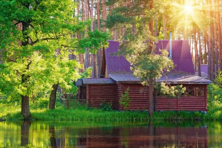 Wooden house in forest at the lake photo