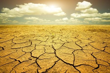 erde: Dürre
