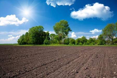 ploegen: Farm veld