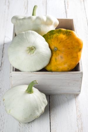 squash vegetable: Squash vegetable Stock Photo