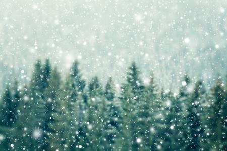 Fond d'hiver Banque d'images - 24298770