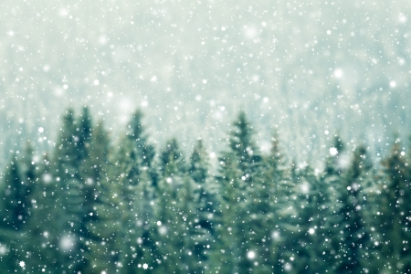 Winter background Banco de Imagens - 24298770