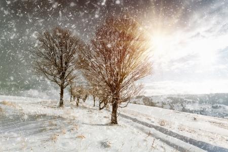 ray trace: Winter landscape Stock Photo