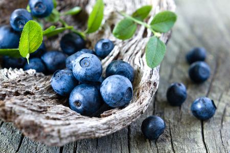 Blueberry Standard-Bild
