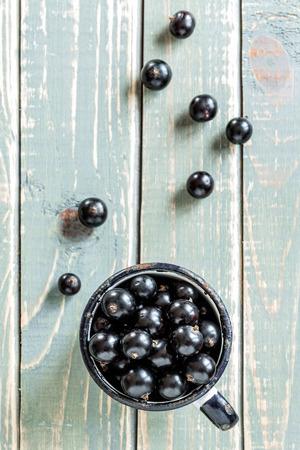 black currant: Blackcurrant
