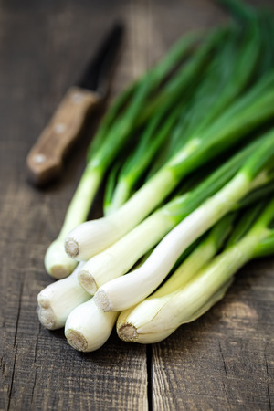 Spring onion Stock Photo