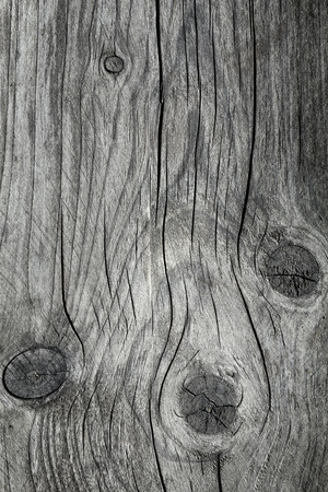 wood deck: Wood texture Stock Photo