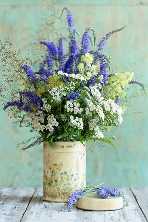 fiori di campo: Wildflowers