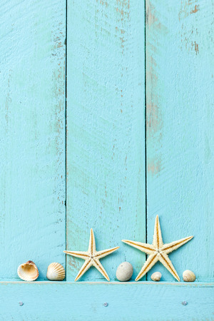 starfish: Summer background