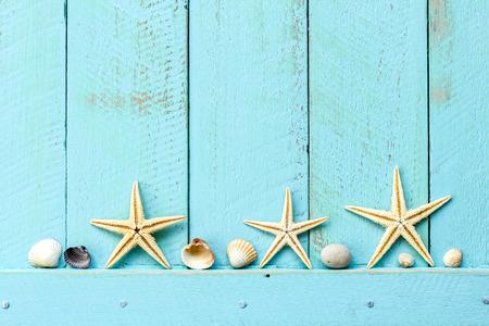 stella marina: Estate sfondo