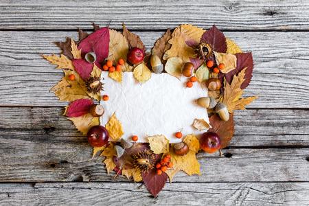 Autumn background Stock Photo - 32542227