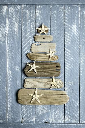 seashell: Christmas tree