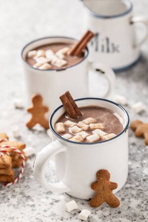 Hot chocolate or cocoa drink with milk and marshmallows. Stok Fotoğraf