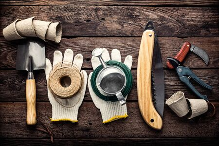 gardening tools on dark wooden background