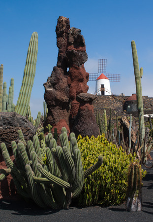 red canary: white windmill with red roof in lanzarote canary islands spain