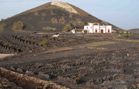 black soil: a white building on a lava black soil in lanzarote