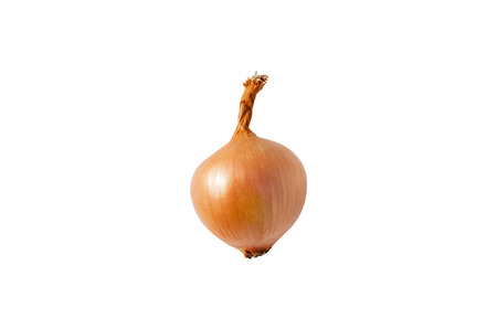 Isolated onion. One onion isolated on  white background