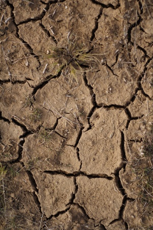 The earth after a drought