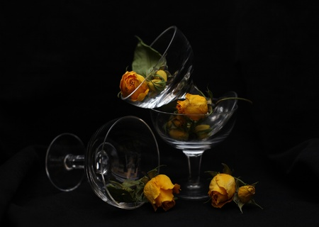 yellow roses in glass wine glasses (on a black background)