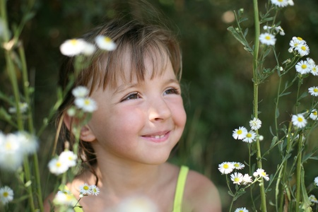 Portrait of the girl sitting in camomiles (small depth of sharpness) photo