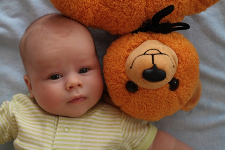 Portrait of the child and its teddy bear