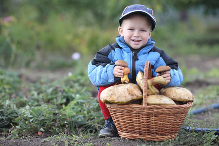 cheerfully smiling boy with a basket of mushrooms