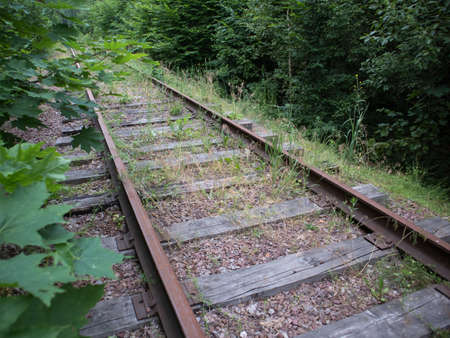 Old abandoned railway with wooden sleepers in the forest is overgrown with plants and grass in the summer. Transport infrastructure crisis concept
