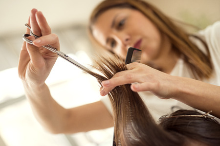 At the hairdressers.Young female hairdresser cutting hair of a female customer.