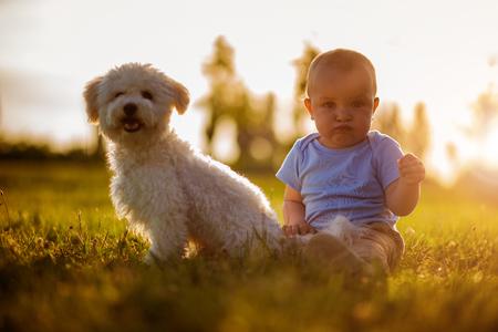 lovingly: Little boy lovingly embraces his pet dog outdoors.