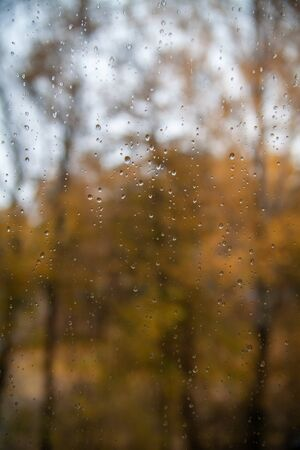 Rain drop on the window glass. Autumn yellow leaves in backgound