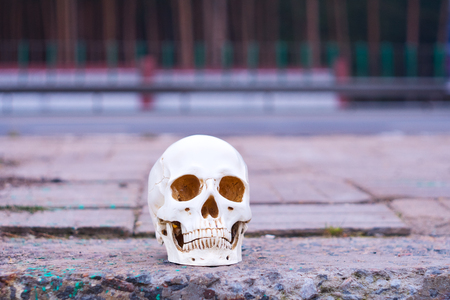 Skull near the road. Attention Danger on the roads Accidents Murder