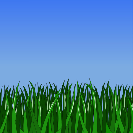 simple green grass on gradient blue background Illustration