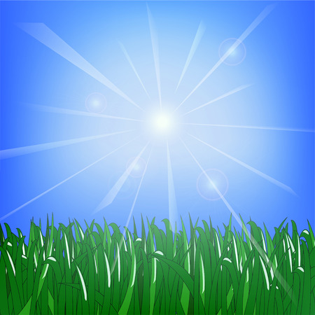 Green grass against the background of a sunny sky with highlights Illustration