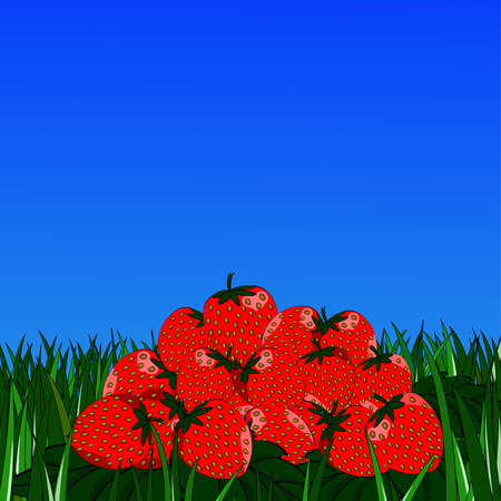 slide strawberries on the grass on background of blue sky