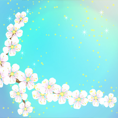 spring soft blue background from the flowers of the apricot