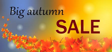 Autumn sale colorful maple leaves. Vettoriali