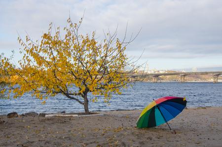 rainbow umbrella: Rainbow umbrella on the river bank