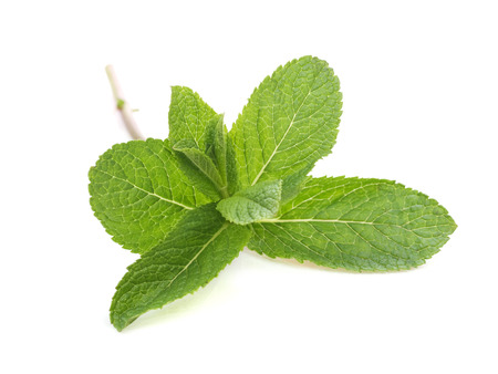 Fresh spearmint isolated on white, close up