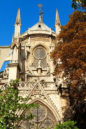 du: Notre Dame from Square du Jean XXIII, Paris