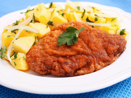 potato salad: Schnitzel with potato salad in a plate