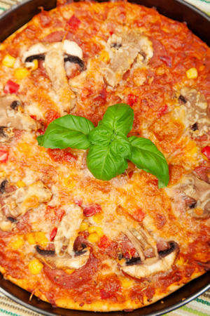 Small homemade pizza with mushrooms, tomato, mozzarella, and basil photo