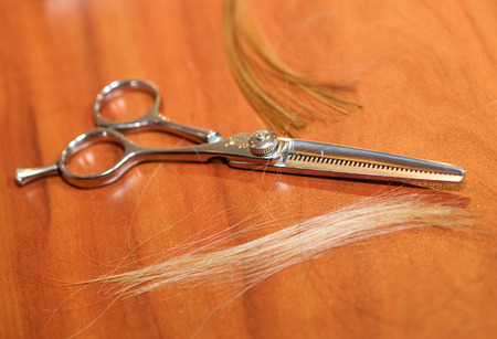 haircutting: Haircutting Scissors Stock Photo