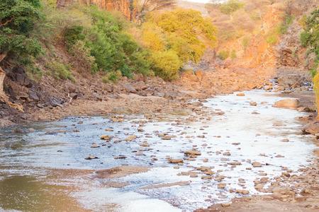 amboseli: Amboseli park, Kenya