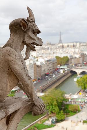 gargouille: Gargouille de Notre Dame � Paris. River et Tour Eiffel sur fond Banque d'images