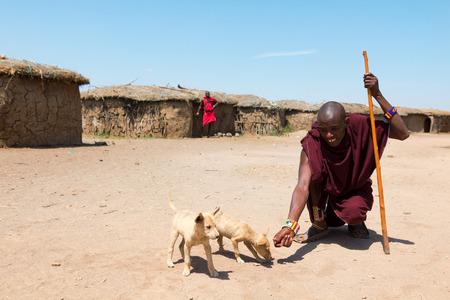 perros vestidos: Amboseli, Kenia - 07 de febrero 2012 - Los Masai sirven alimentar a los perros. Vestido con ropa típica en el pueblo Masai en el Parque Nacional de Amboseli