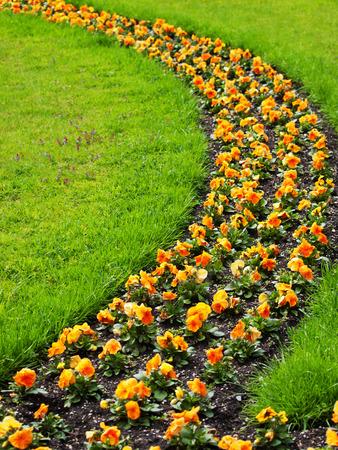 Bloemen met grassen